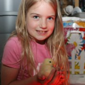 Girl holding baby chick.