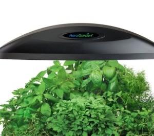 Aero Herb Garden