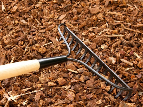 Best Mulch For Repelling Bugs Thriftyfun