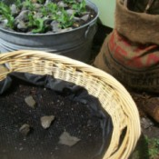 Creative Container Gardening - wicker basket, burlap bag, and wash tub planters