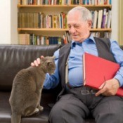 An old man sitting on a couch with his cat.