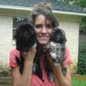 Kortney's Puppies (Shih-Tzu) - Woman holding up 2 dark haired Shih Tzu puppies.
