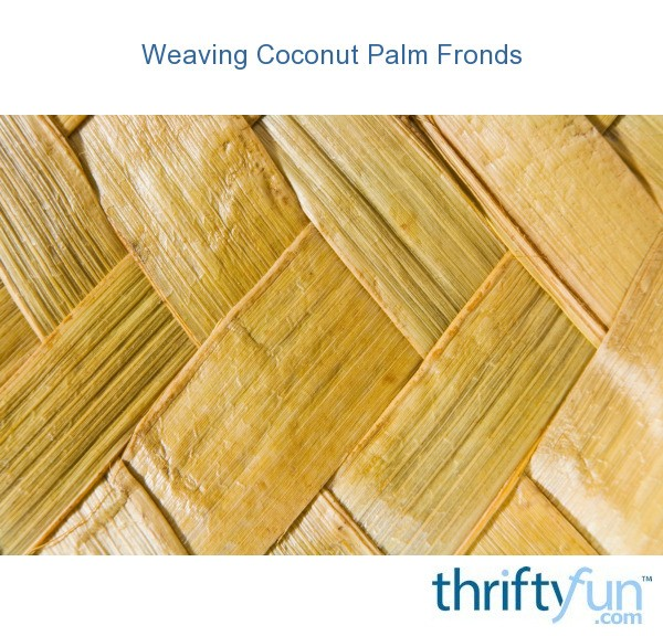 How To Weave Palm Fronds Into A Basket : Weaving coconut palm fronds thriftyfun