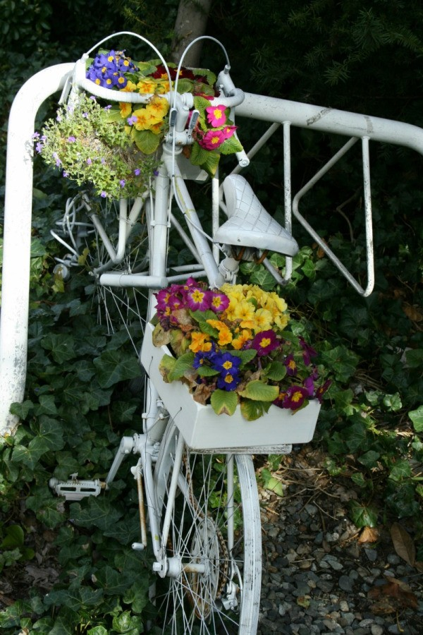 Frugal Planter Ideas Thriftyfun