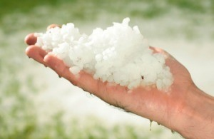 Holding a hand full of hail.