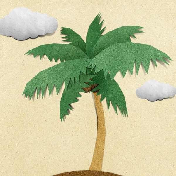 Making Palm Trees And Palm Leaves Thriftyfun