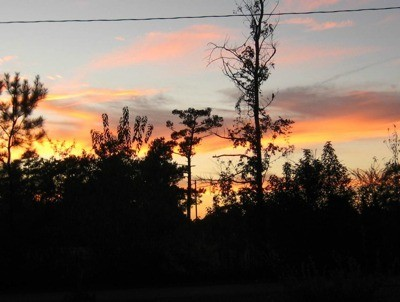 Scenery: Sunset