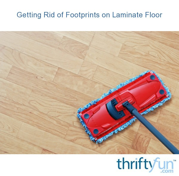 Cleaning Of Footprints On Laminate Floor Thriftyfun