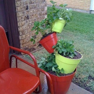 Tilted Strawberry Planter