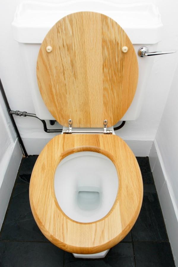 Repairing A Peeling Wood Toilet Seat Thriftyfun