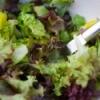 Storing Salad