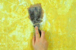 Patching a Plaster Wall