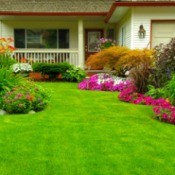 A home with bright green lawn surrounded by beautiful flower beds.