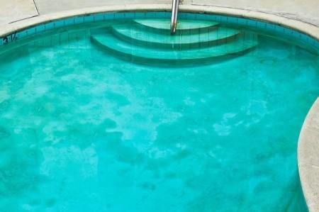 Algae in a pool