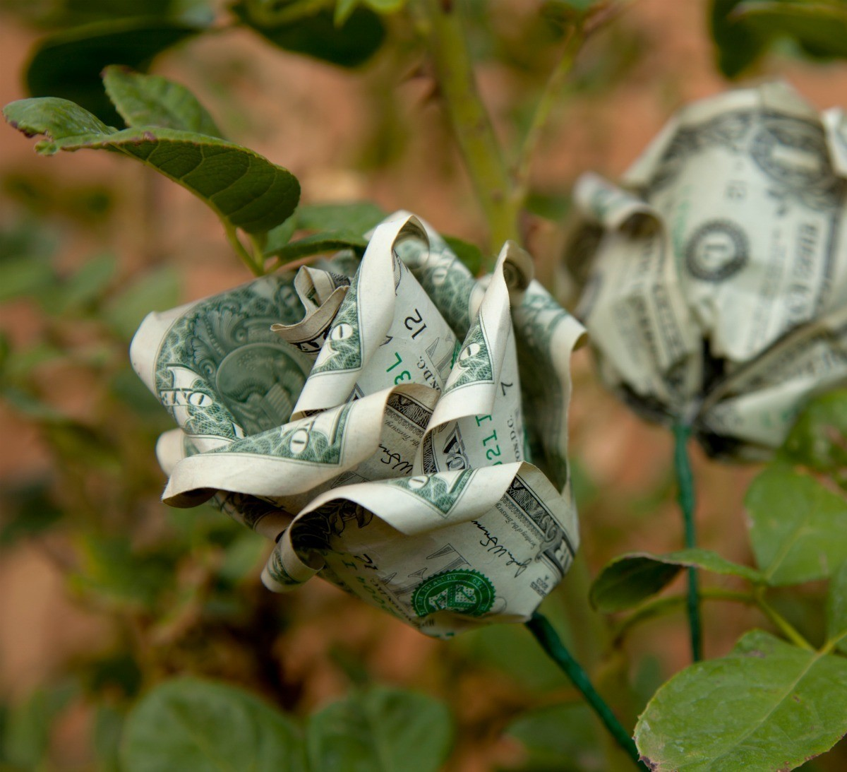How to Make Flowers out of Dollar Bills - YouTube | 1093x1200