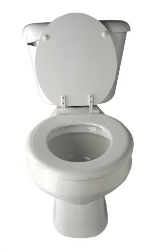 White toilet.