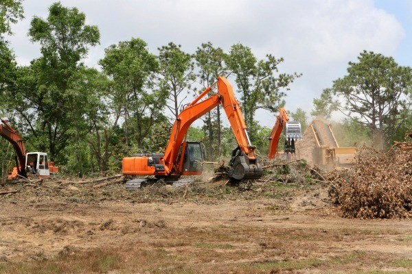 Land Clearing Tips Thriftyfun