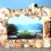 Photo frame decorated with sea shells.