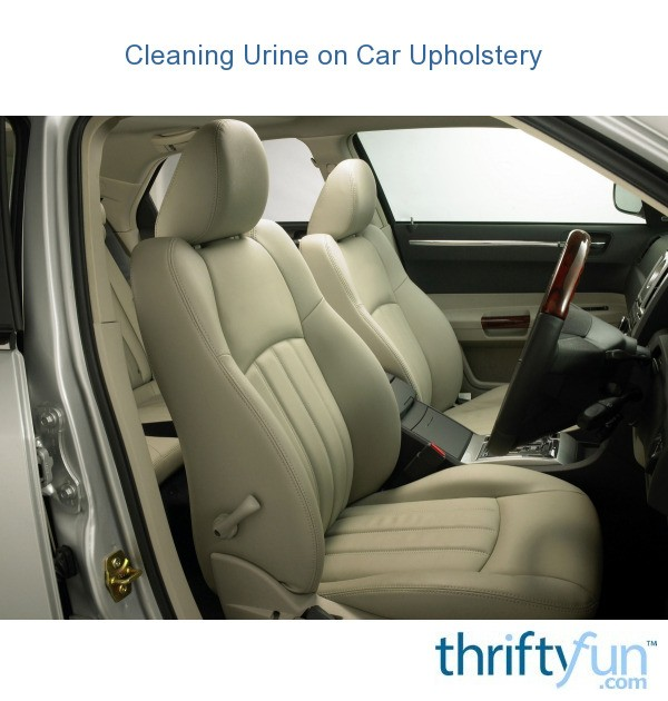 Cleaning Urine On Car Upholstery
