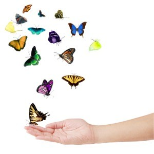 butterflies flying from hand