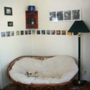 CD covers as wall art.