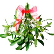 Mistletoe with red ribbon