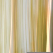 Light colored drapes.