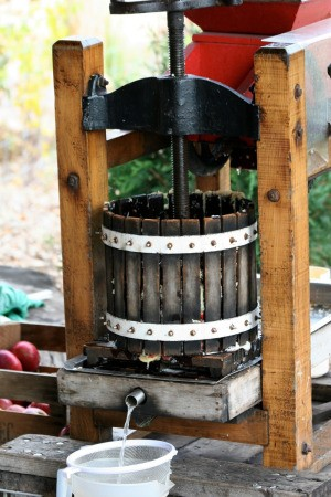 An apple press making apple juice.
