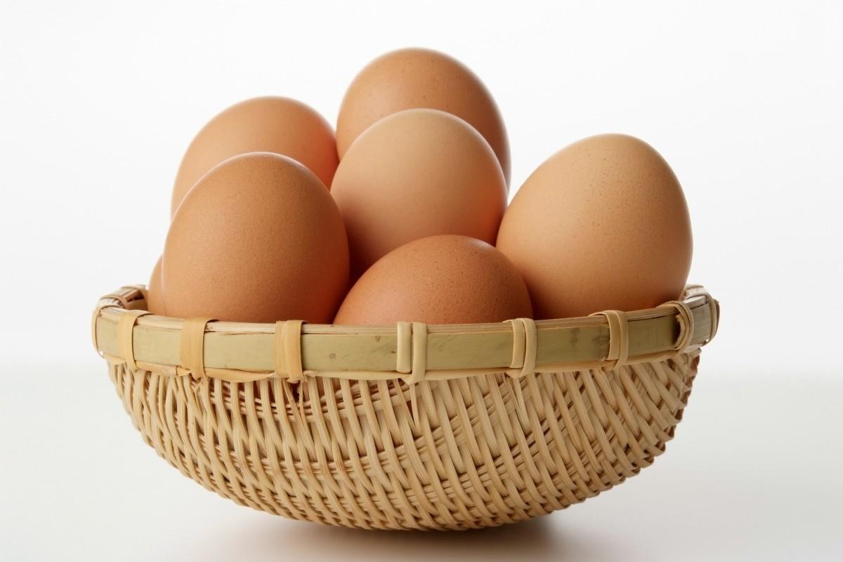 Freezing Eggs | ThriftyFun