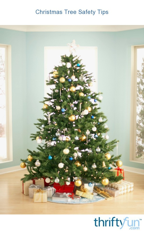 Christmas tree safety tips thriftyfun - Tips to care for a natural christmas tree ...