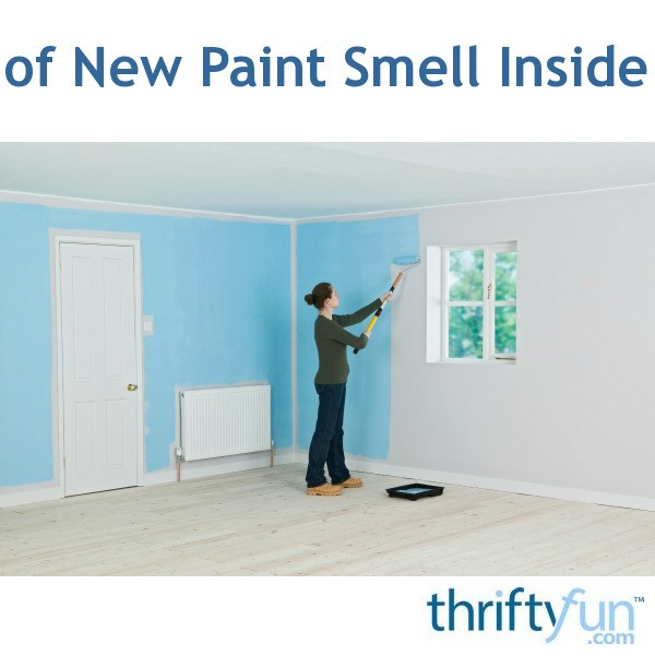 Removing Paint Odors | ThriftyFun