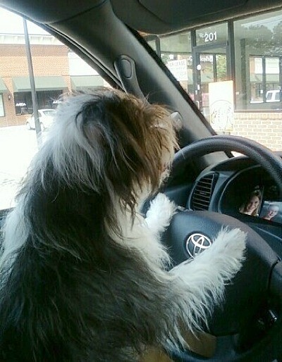 Jeter behind the wheel of a Toyota.