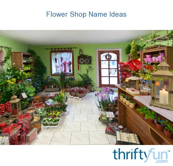 home decor store name ideas flower shop name ideas thriftyfun 12419