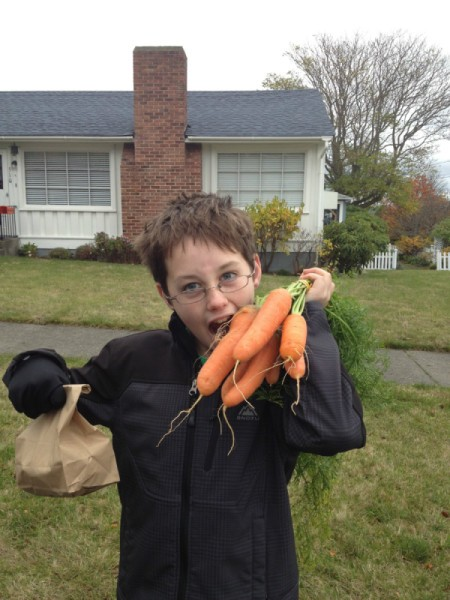 child with fresh carrots