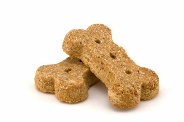 Name Ideas For Homemade Pet Treats Business Thriftyfun