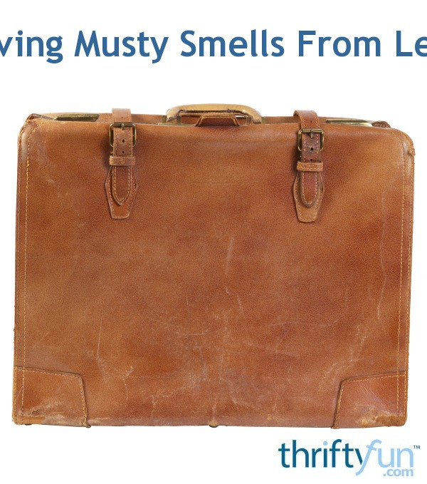 Getting Mildew Smell Out Of Leather Shoes