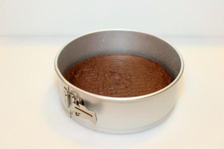 Mint Chocolate Chip Ice Cream Cake - put cake in pan