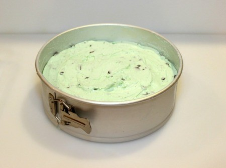 Mint Chocolate Chip Ice Cream Cake - add ice cream 2