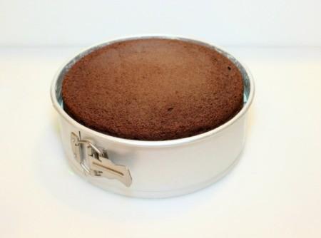 Mint Chocolate Chip Ice Cream Cake - add second cake