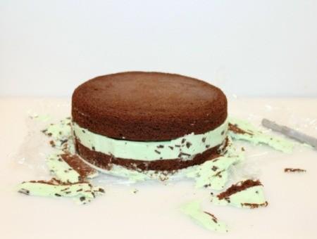 Mint Chocolate Chip Ice Cream Cake - trim off excess ice cream