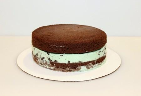 Mint Chocolate Chip Ice Cream Cake - ice cream cake before icing