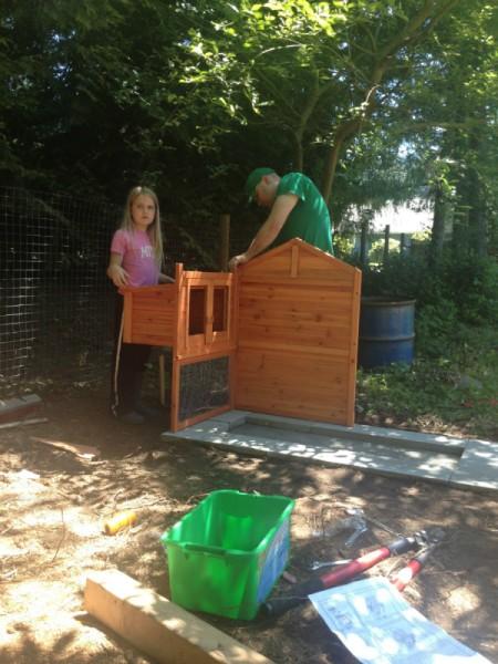 building coop