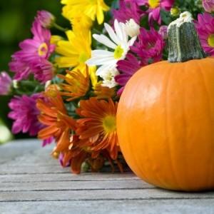 outdoor pumpkin decoration