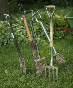 Several garden tools.