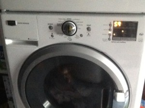 Front load washer.