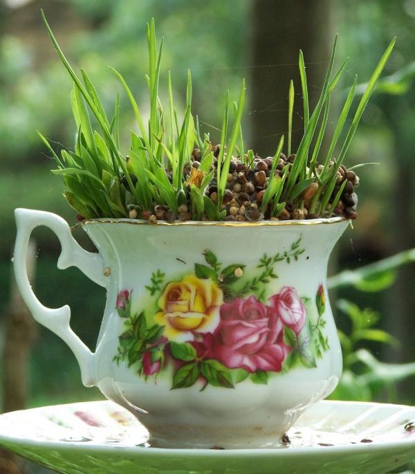 Making A Tea Cup Bird Feeder Thriftyfun
