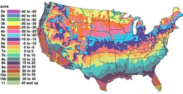 USDA Plant Hardiness Zones ThriftyFun - Map of growing zones in the us