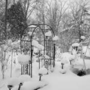 Snowy garden trellis and path lights.