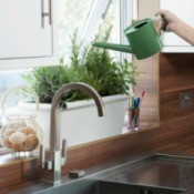 Watering a kitchen planter.