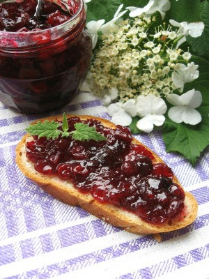Cranberry sauce on toast.